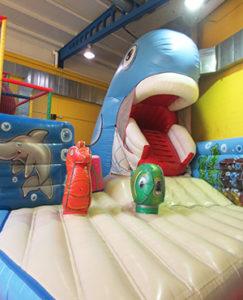 La ballena de Planeta Mágico