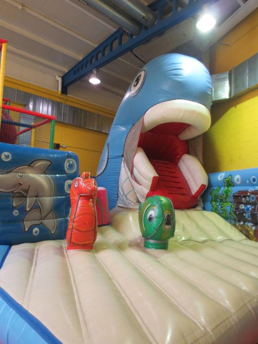 A balea de Planeta Máxico